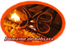 Domaine de Bahyara - Elevage de Pure race espagnole